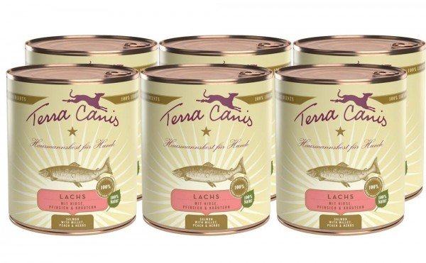 Terra Canis Classic Nassfutter, Lachs mit Hirse