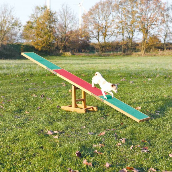 TRIXIE Dog Activity Agility Wippe 300x34x54cm
